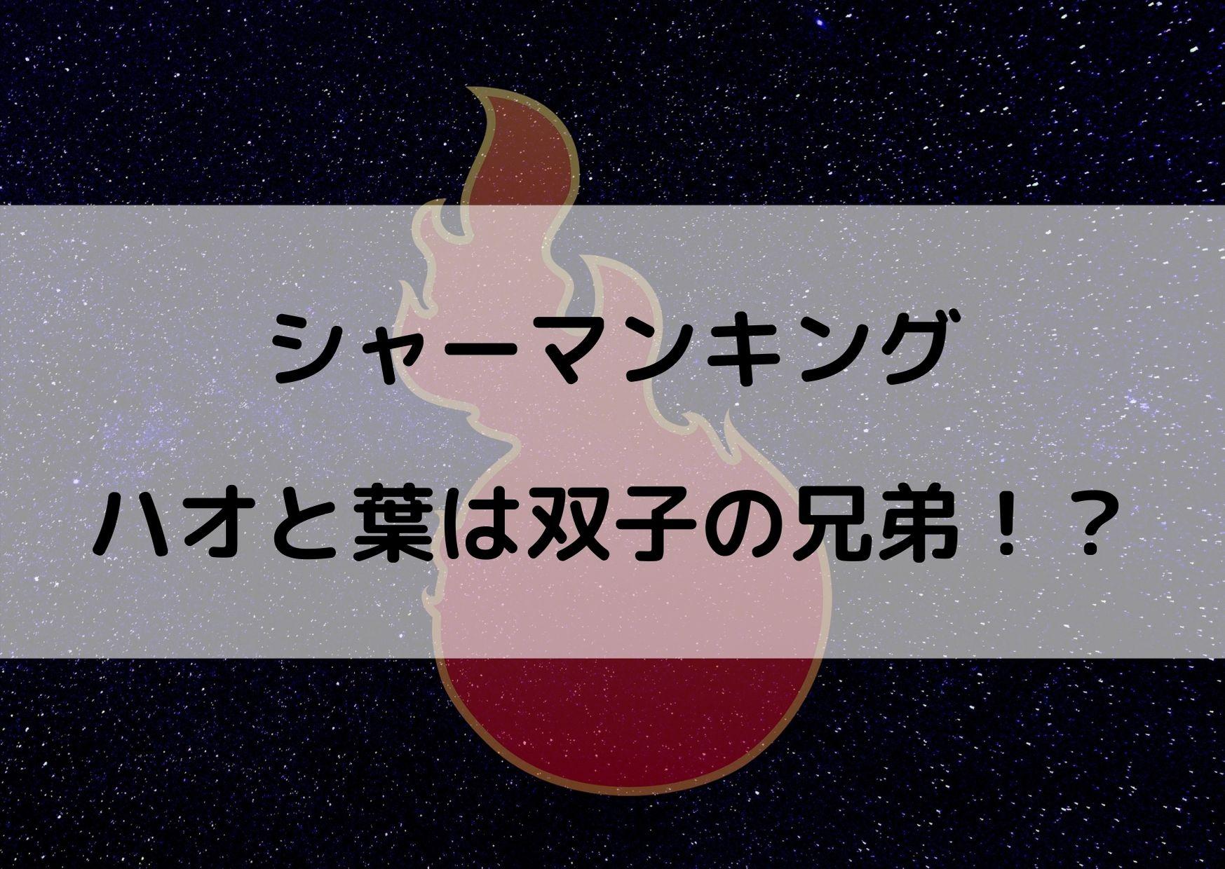 シャーマンキング ハオ 葉 関係